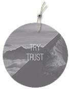 Try Trust 200 x252